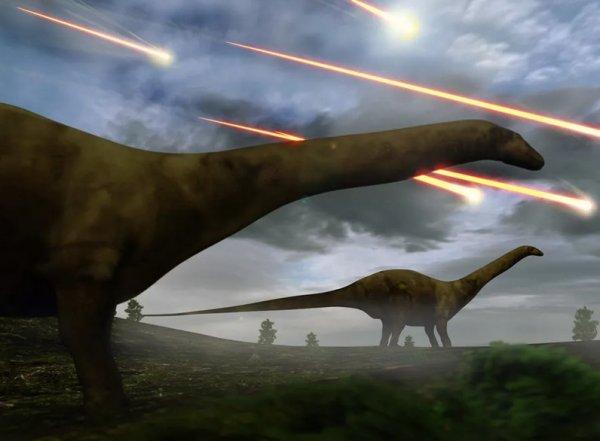 Dinozorların sonu hakkındaki tartışmalarda son tespit #1